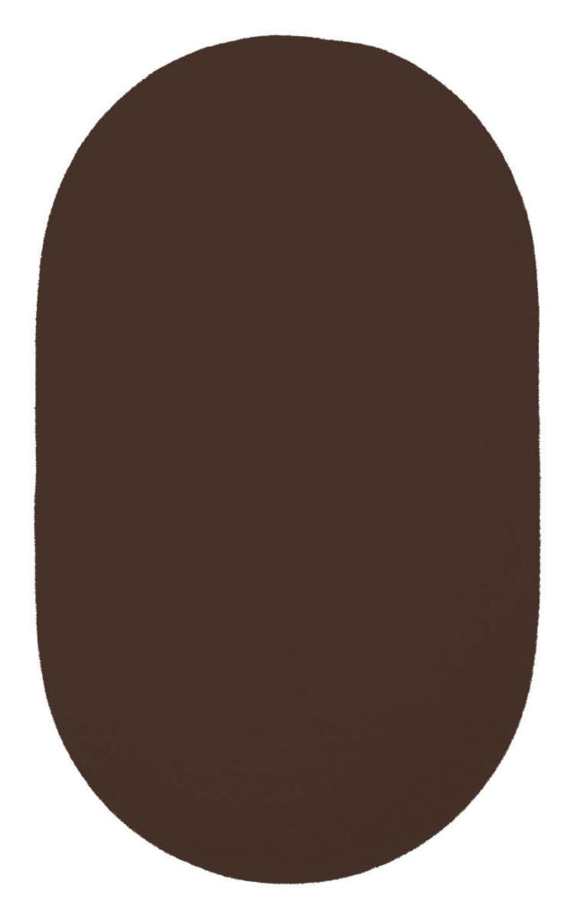Capel Chenille Creations 770 Brown Braided Rug