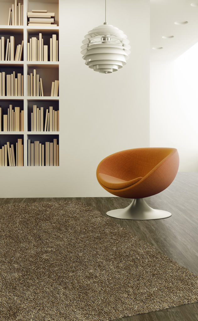 Dalyn Belize BZ100 Stone Rug Room View
