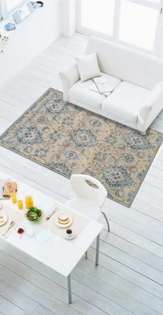 Dalyn Antigua AN5 Linen Rug Room View